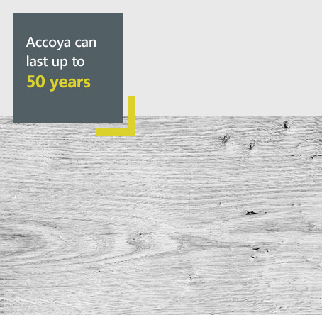 Accoya timber diagram - Our Accoya timber products can last up to 50 years